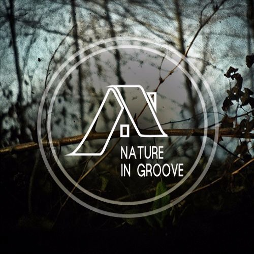 Nature In Groove's avatar