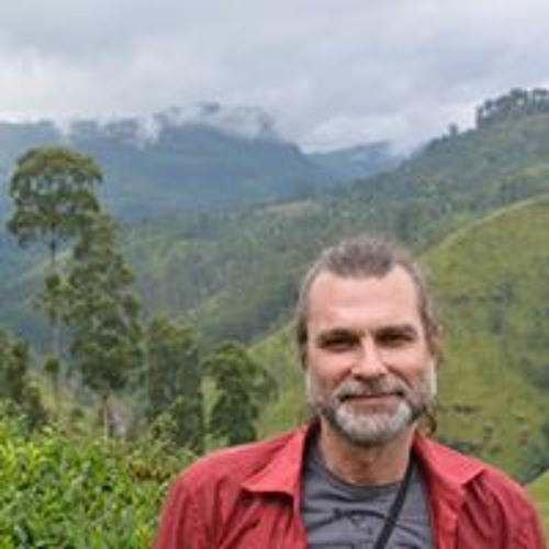 Igor  Kokovin's avatar