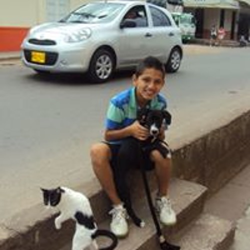 Diego Andres Vargas Falla's avatar