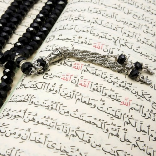 Islam) Religion of Peace   Free Listening on SoundCloud