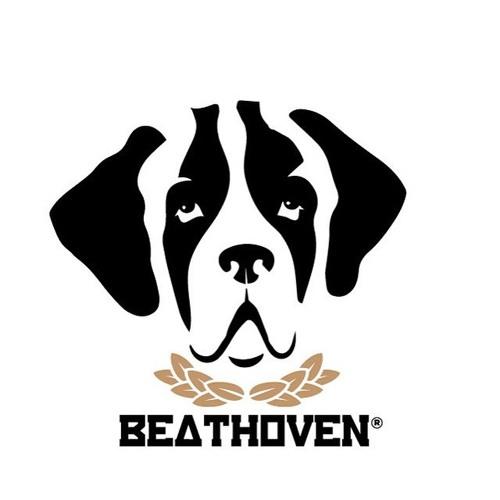 BEATHOVEN's avatar