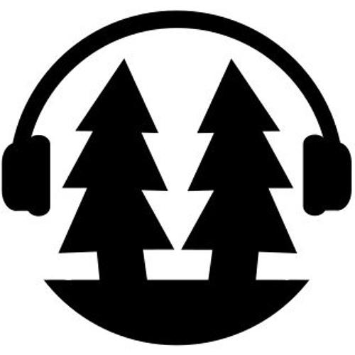 DFM - The DF Podcast's avatar