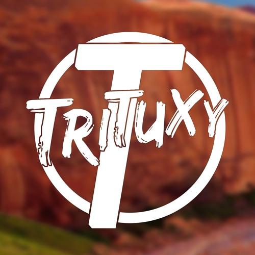 Trituxy's avatar