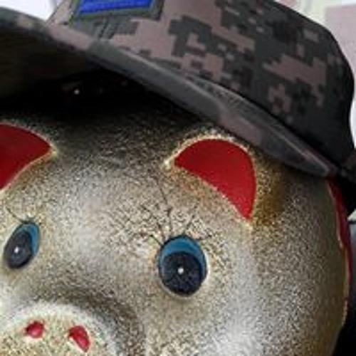 0100v's avatar