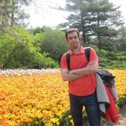 Adel Soroush's avatar
