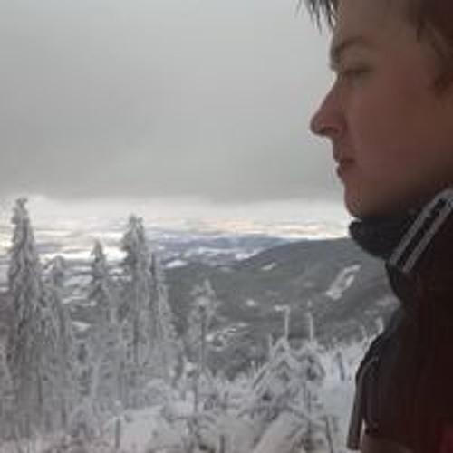 Mirek Budinský's avatar