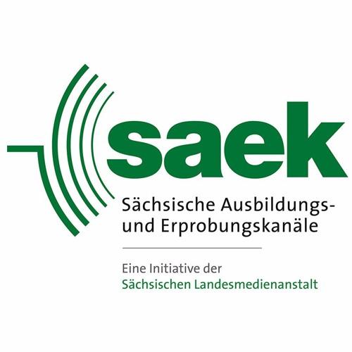 SAEK Dresden's avatar