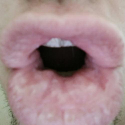 kuckuckz's avatar