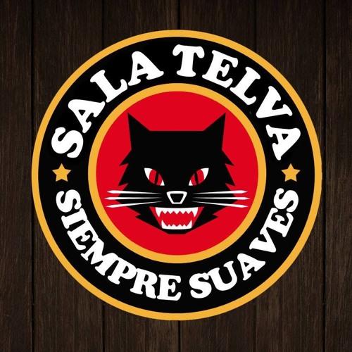 Sala Telva's avatar