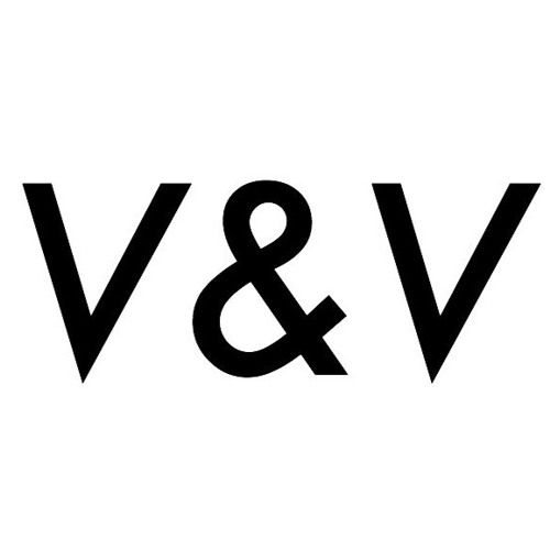 Vice and Vision's avatar