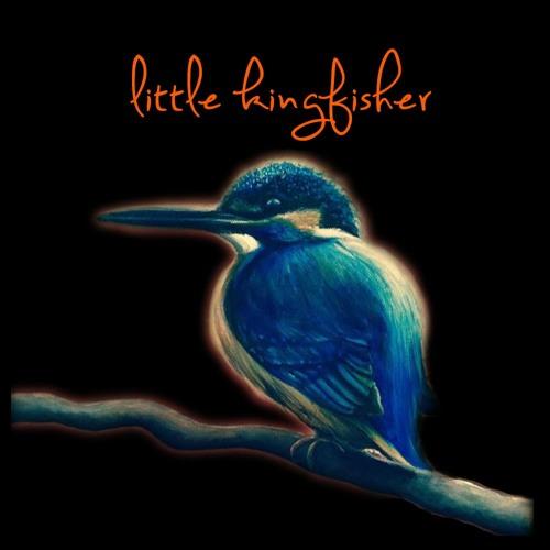 Little Kingfisher Music's avatar