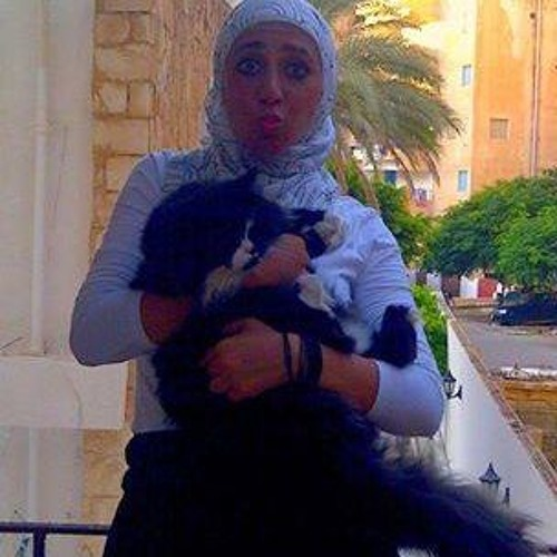 Dina Mostafa 8's avatar