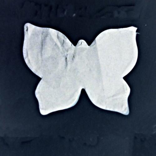 Farfallina Intrepida's avatar