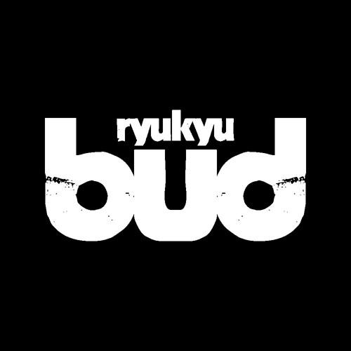 budryukyu's avatar