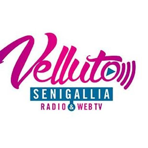 Radio Velluto Senigallia's avatar