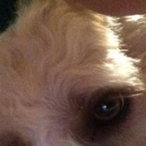Alex Eigsti's avatar
