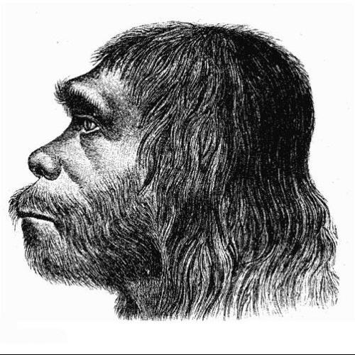Angertaler's avatar