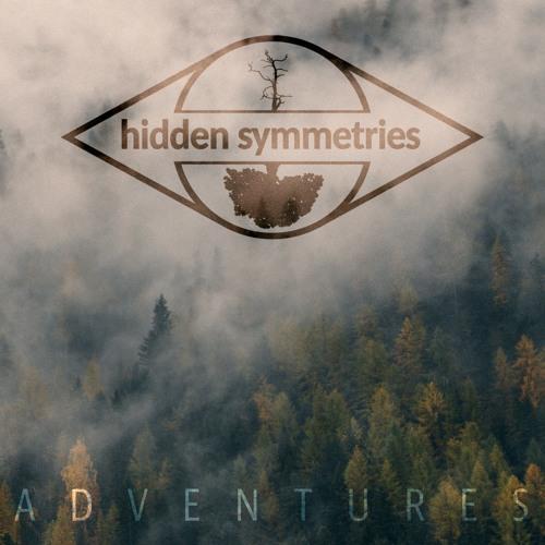 Hidden Symmetries's avatar