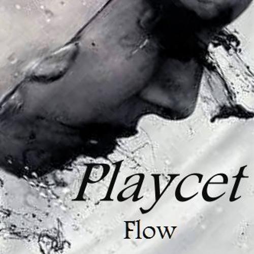 Playcet~'s avatar