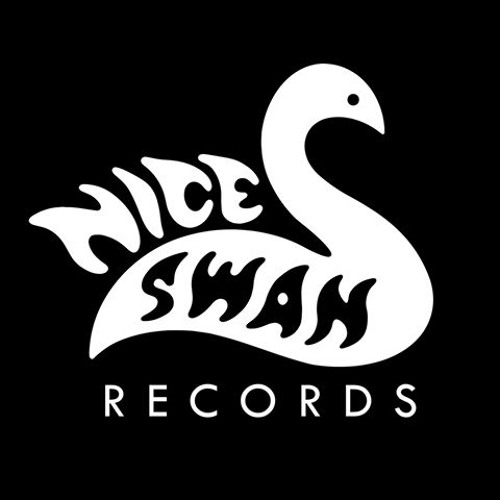 Nice Swan Records's avatar