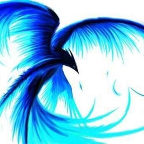 Blue Island Repost 🏄's avatar