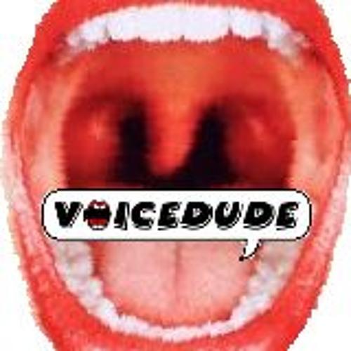 Voicedude's avatar