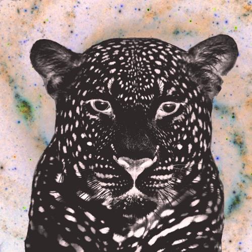 Baphcat's avatar