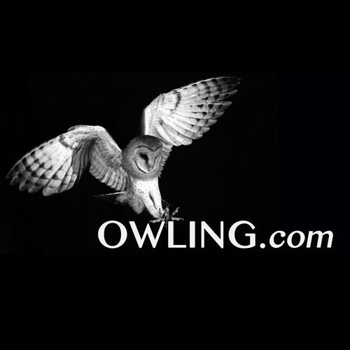 Owling's avatar
