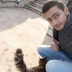 رامي ميشيل سعد