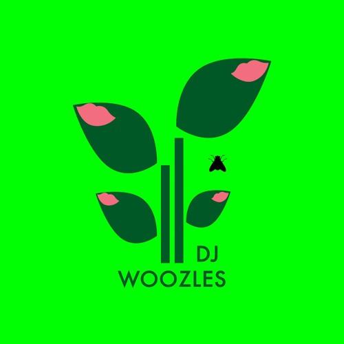 Dj Woozles's avatar