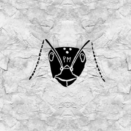 $en$ei's avatar
