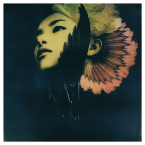 CharlineAJAdams's avatar