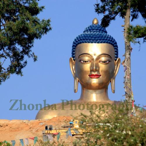 Zhonba's avatar
