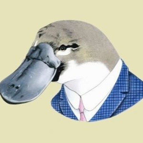 tORu S. (Housemaster Platypus)'s avatar