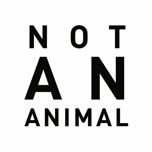 NOT AN ANIMAL Records's avatar