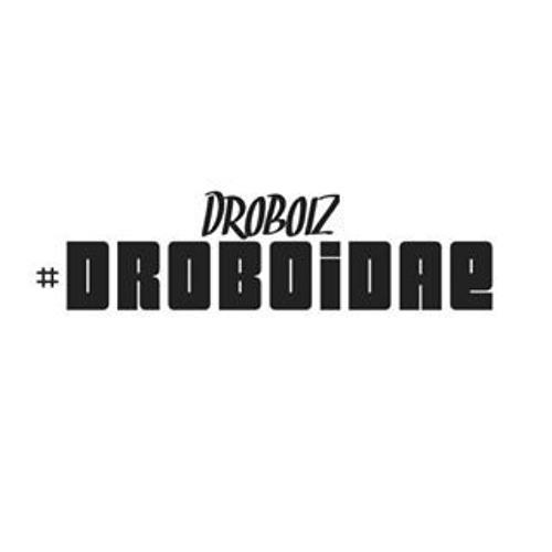 Droboidae.1's avatar