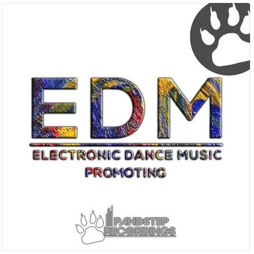 EDM Promoting 4's avatar