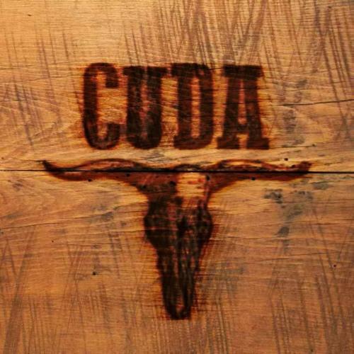 CUDA's avatar