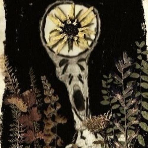 Hallow Earth's avatar