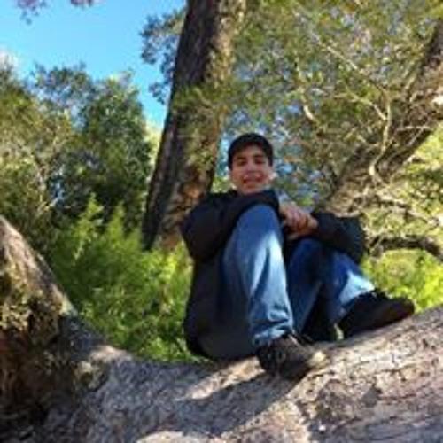 Gonzalez Bastian's avatar