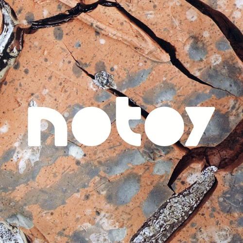 notoy's avatar