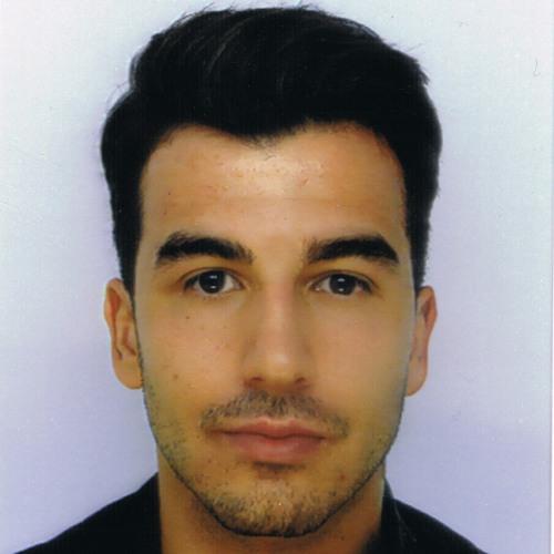 S Saracoglu's avatar