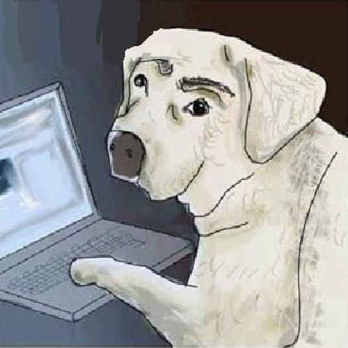 N Urgatz's avatar