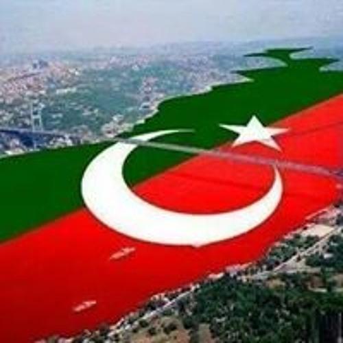 Imtiaz Ali Detho's avatar