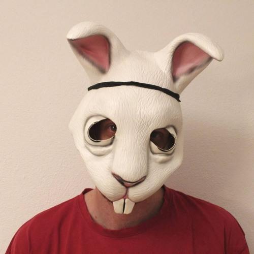 follow_the_white_rabbit's avatar