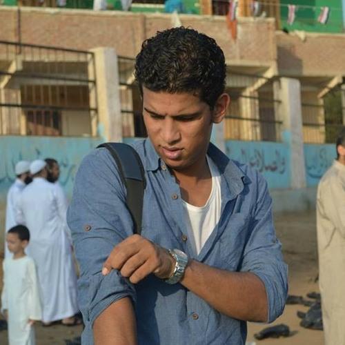 Mahmoud El-Meligy's avatar