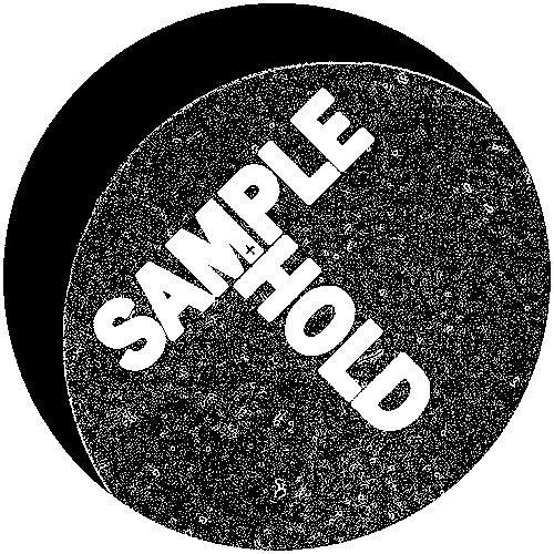 Patrik Skoog | Sample+Hold | Discrete Data's avatar