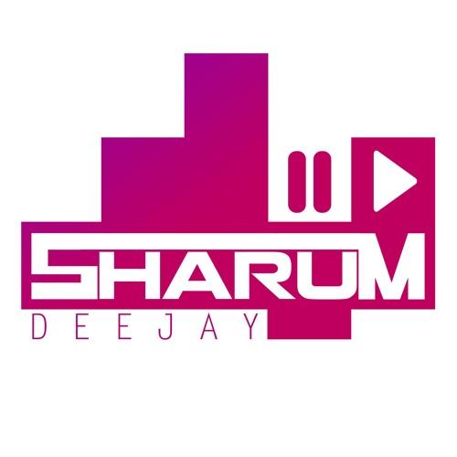 Shahram Shahin's avatar