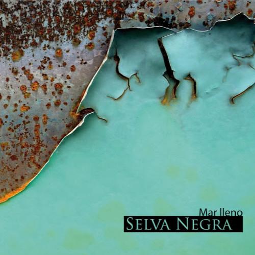 Selva Negra's avatar