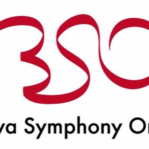 Bratislava Symphony orchestra's avatar